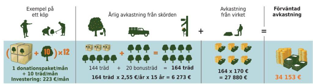 bonusträd - upplägg
