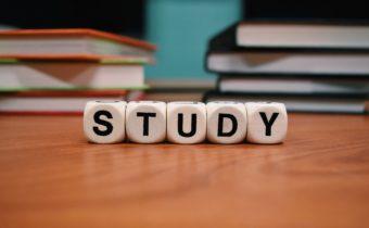 Lönt att plugga om målet är ekonomiskt oberoende?