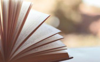Min kommande bok – släpp början av 2021